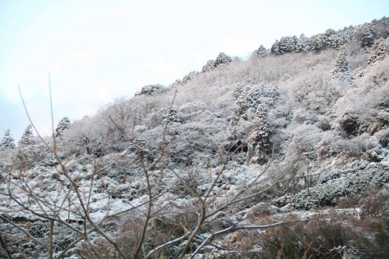 山側を写せば、もう雪国そのものでした!!!