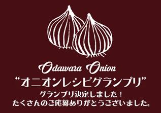 新商品開発プロジェクト「オニオンレシピグランプリ」終了いたしました。