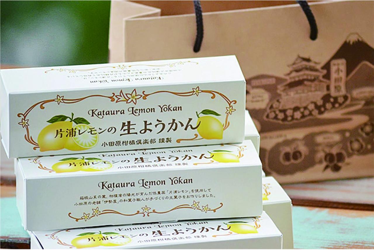 コンクール受賞!「片浦レモンの生ようかん」が神奈川指定名菓に