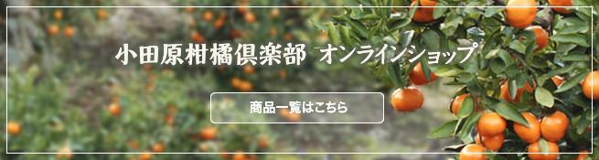 小田原柑橘倶楽部オンラインショップ 商品一覧はこちら
