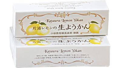 片浦レモンのようかん